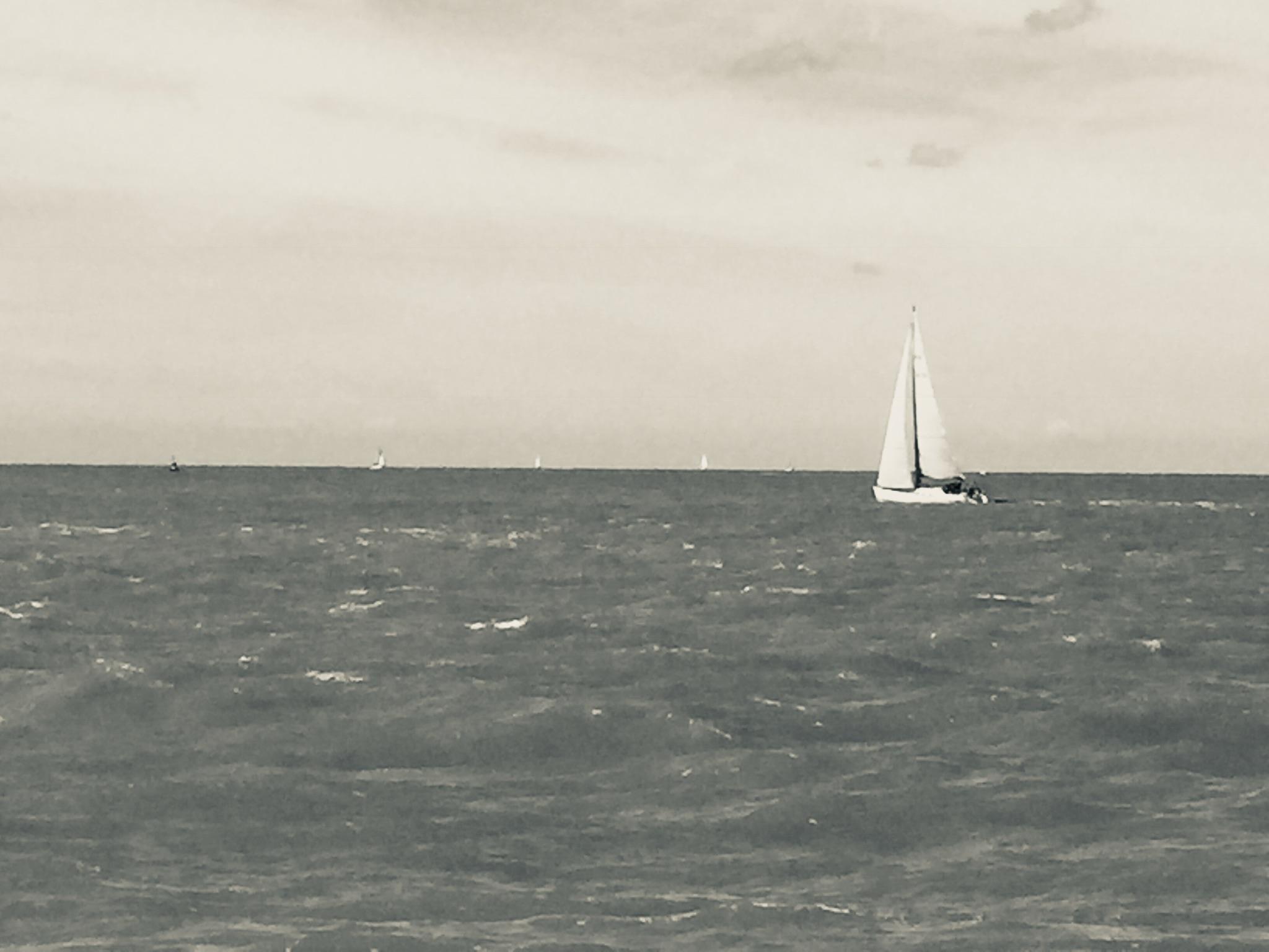 De wind in de zeilen